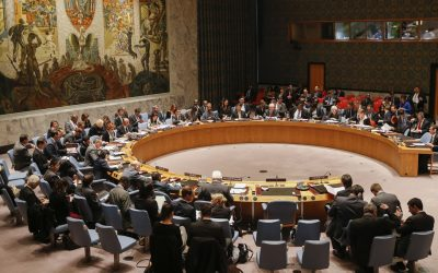 ECI calls upon UN Security Council to give the US peace plan a chance
